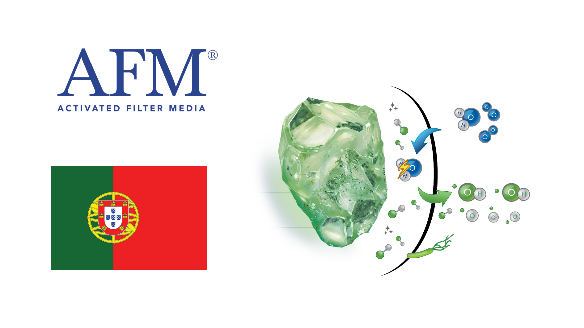 AFM E-learning Video Portuguese