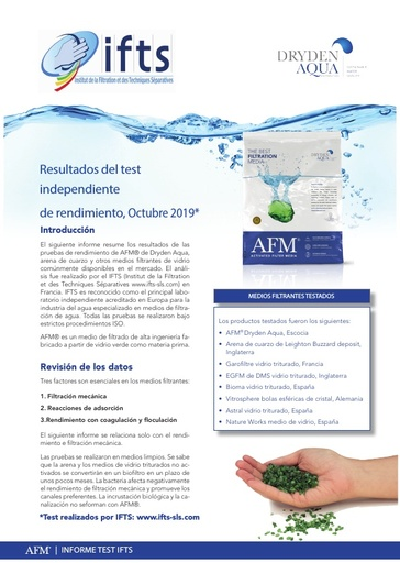2019 IFTS Report AFM ESPAÑOL